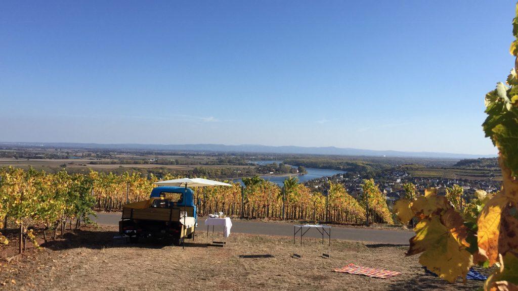 Der Wein-Laster auf einer Wein-Laster-Wanderung durch die Weinberge von Nierstein